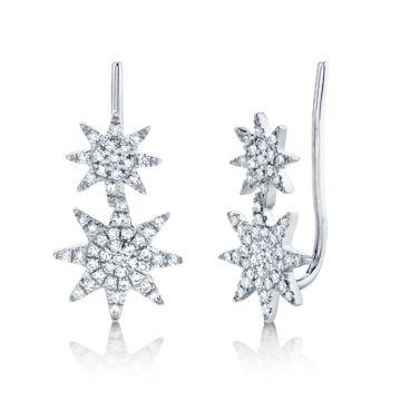 Shy Creation 14k White Gold Diamond Earrings
