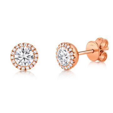 Shy Creation 14k Rose Gold Diamond Stud Earrings